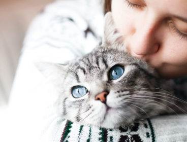 woman hugging gray tabby cat, kissing top of head